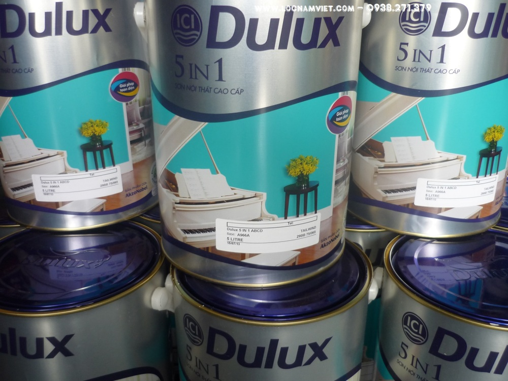 SON DULUX 5 IN 1- (1)