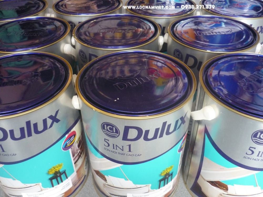 SON DULUX 5 IN 1- (3)