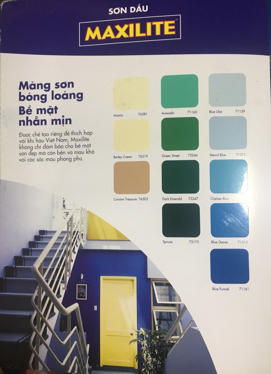BANG MAU SON DAU MAXILITE (2)